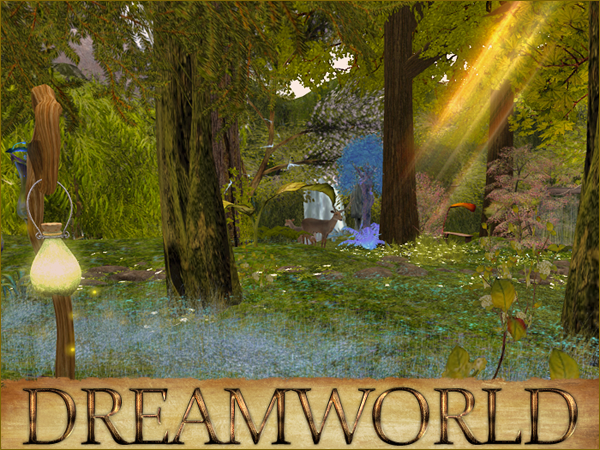 Forest Land In Dreamworld